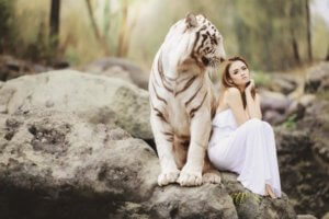 動物と会話-3-min